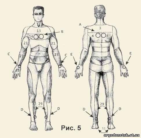Схемы воздействия Аппликаторов Ляпко на зоны организма при различных заболеваниях